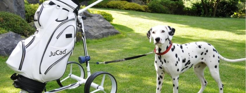 Halterung für Hundeleine von Jucad